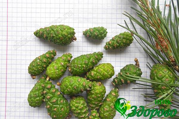 Зеленые шишки для варенья