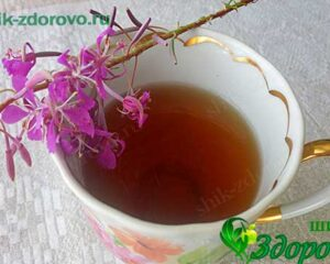 ферментация иван чая в домашних условиях